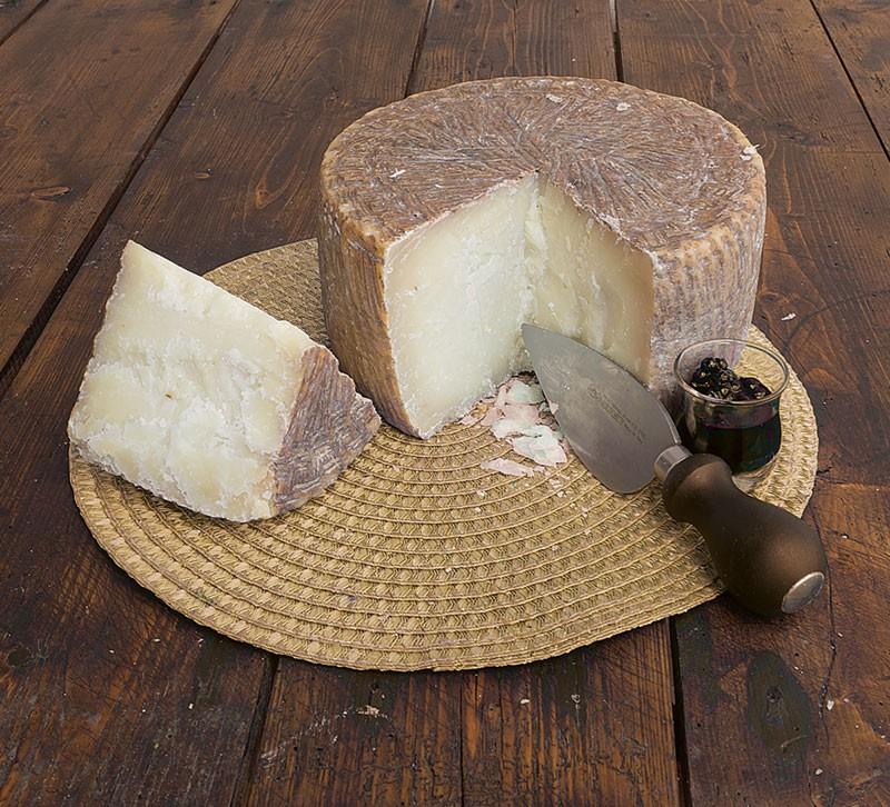 Pecorino cheese Zizzania